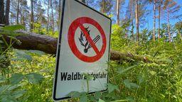 In Bayern herrscht am Wochenende erhöhte Waldbrandgefahr   Bild:dpa