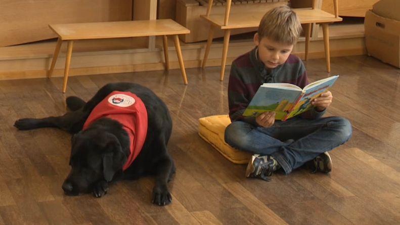 Ein Hund leigt in einem Klassenzimmer neben einem Jungen, der auf dem Boden sitzt und liest.