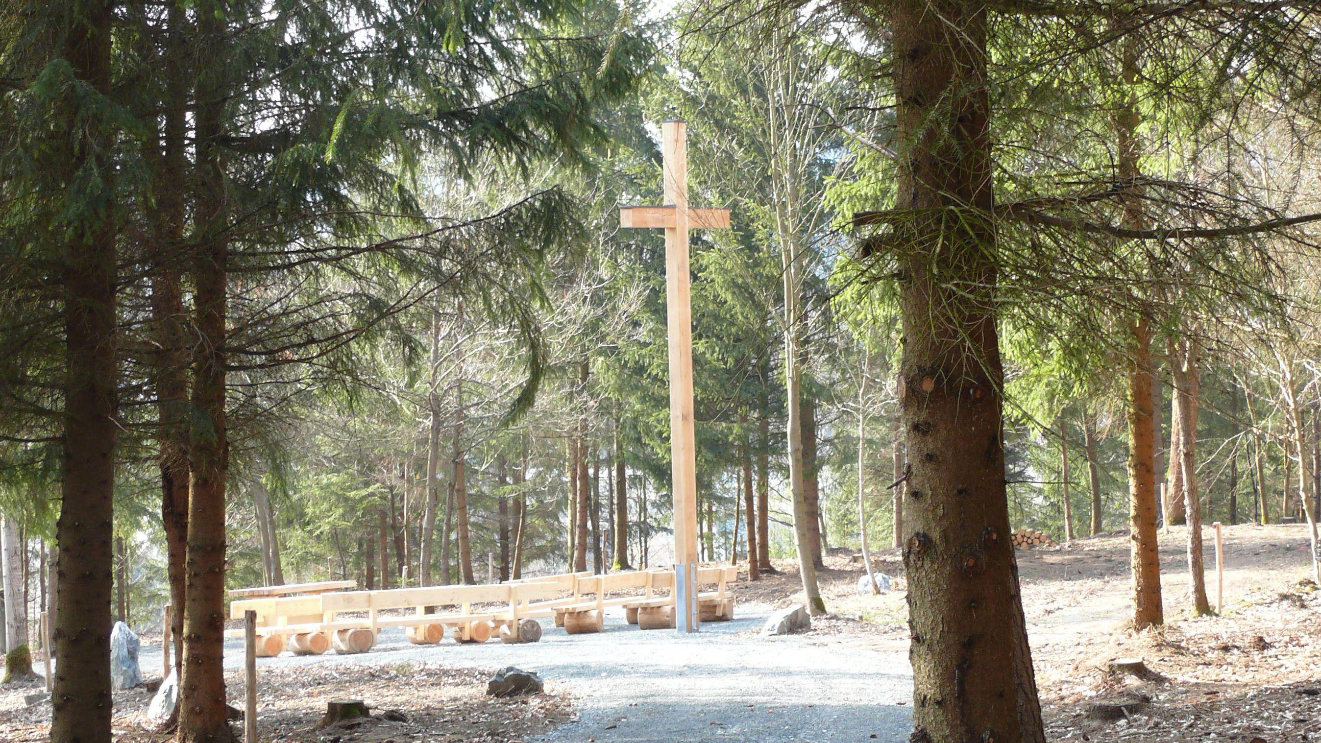 Naturfriedhof: Die ewige Ruhe unter Bäumen und Steinen, nun auch in Naila