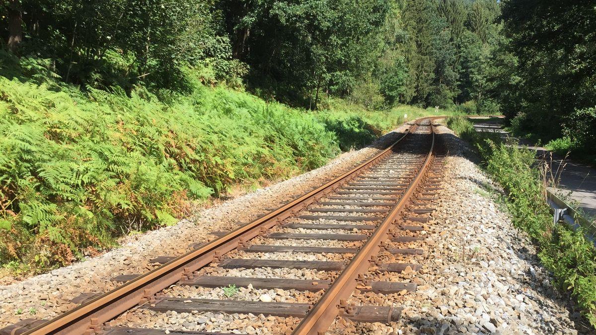 Waldbahn-Strecke Viechtach-Gotteszell