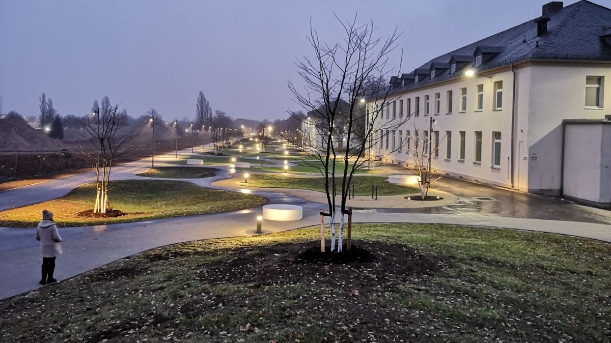Die Carusallee in Schweinfurt