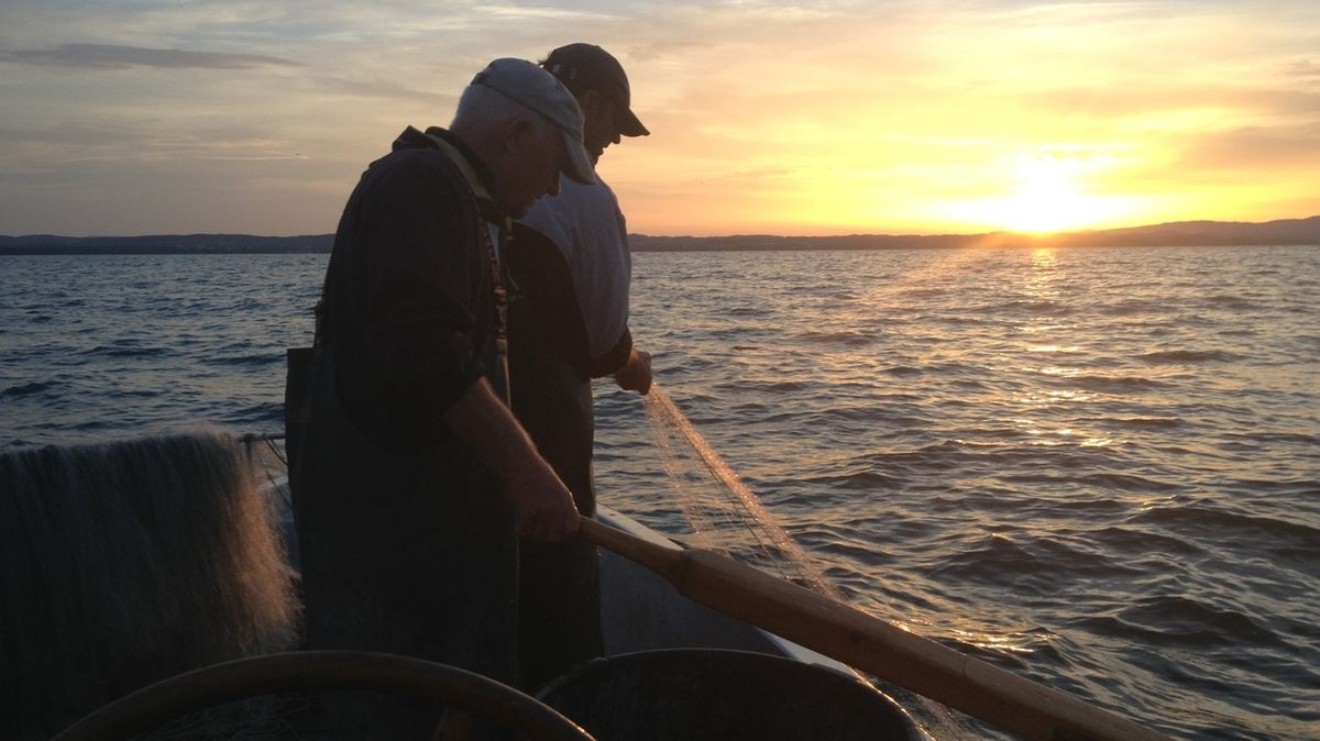 Fischer auf dem Bodensee (Archivbild)