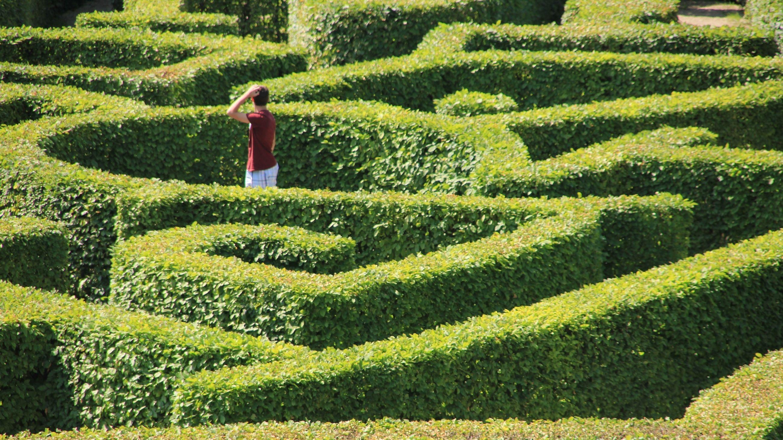 Mann steht in Naturlabyrinth und sucht einen Ausweg.