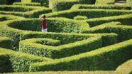 Mann steht in Naturlabyrinth und sucht einen Ausweg. | Bild:colourbox /Jan Sluimer