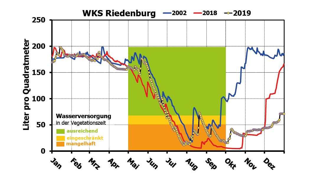 Wasserhaushalt an der Waldklimastation Riedenburg