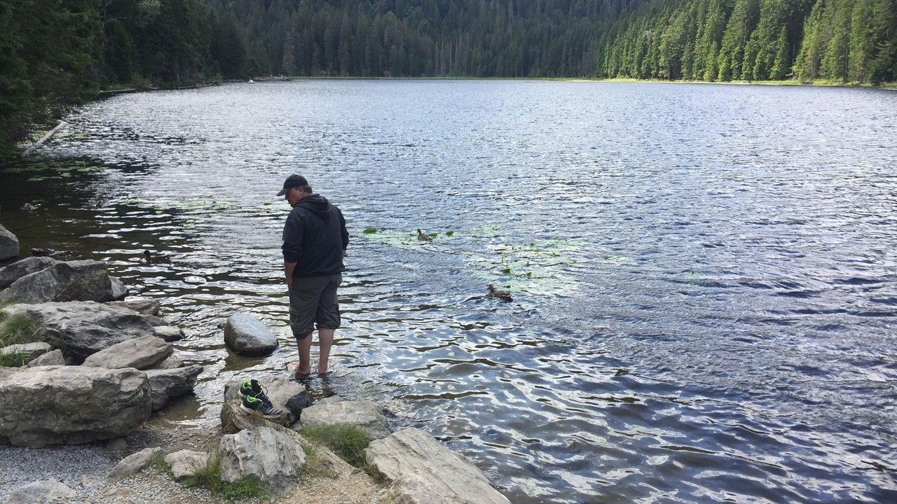 Der Große Arbersee liegt auf 935 Metern über dem Meeresspiegel, ist kühl und tief. Für Mücken kein Paradies.