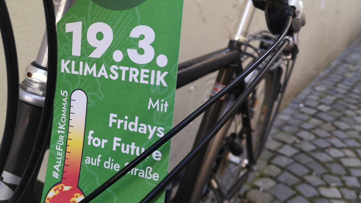 Flyer von Fridays for Future