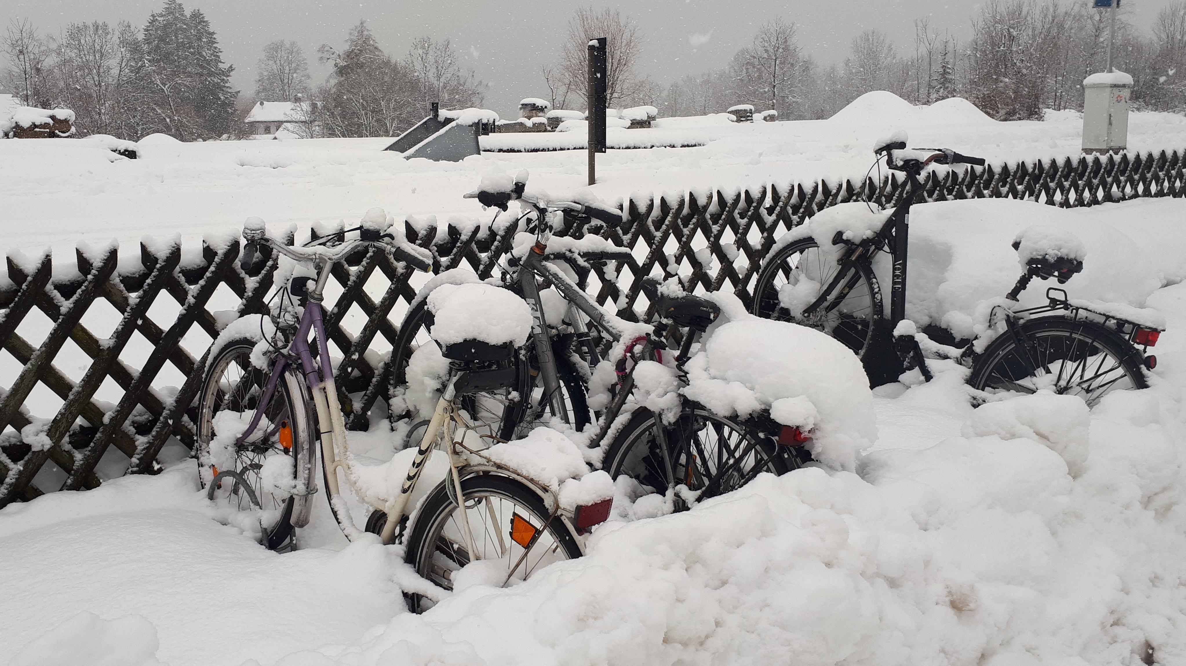 Eingeschneite Fahrräder am Tegernsee.