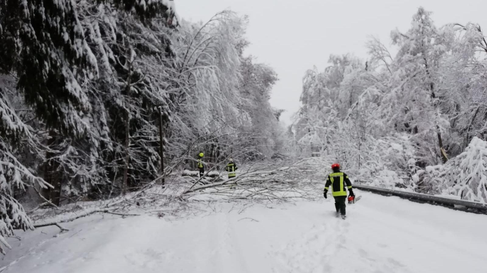 Um die Feuerwehren zu unterstützten, soll jetzt ein Hubschrauber den Schnee von den Bäumen wehen.