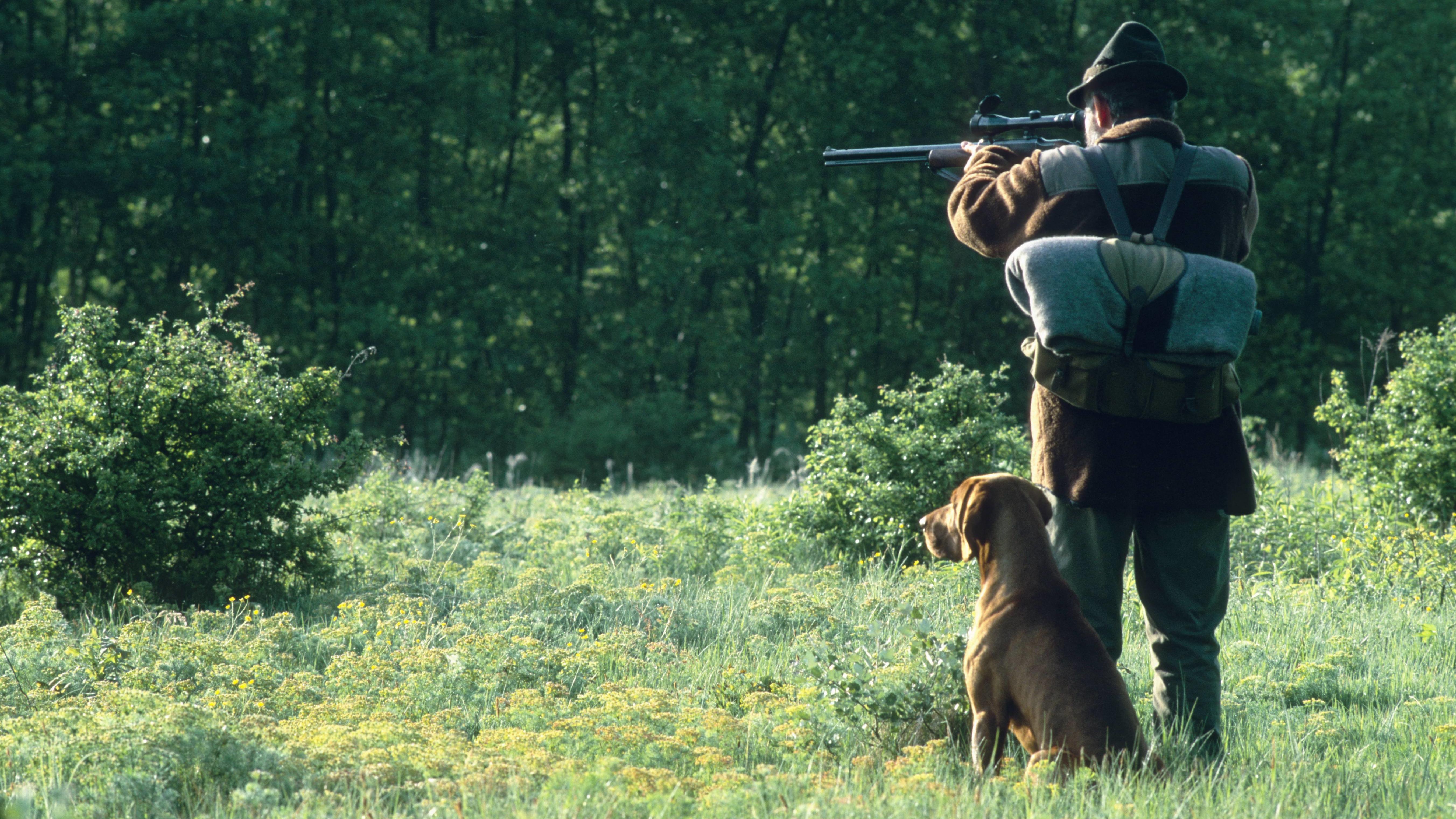 Symbolbild: Jäger mit Hund