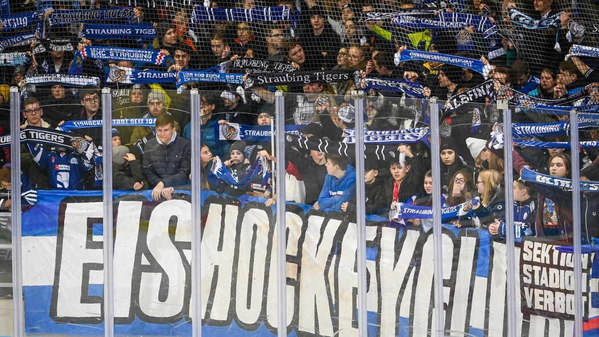 Fans bei den Straubing Tigers