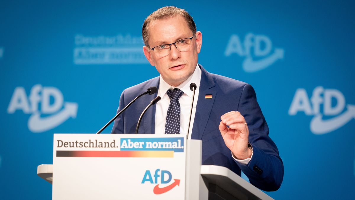 Tino Chrupalla, AfD-Bundessprecher