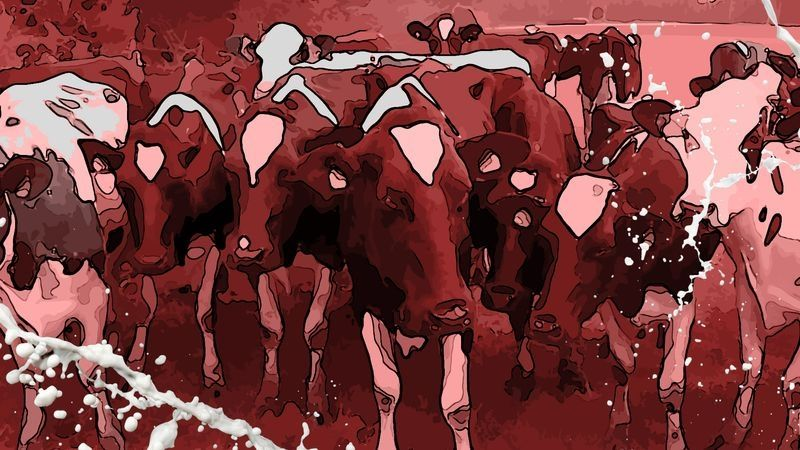 """Symbolbild """"Blutige Milch"""""""