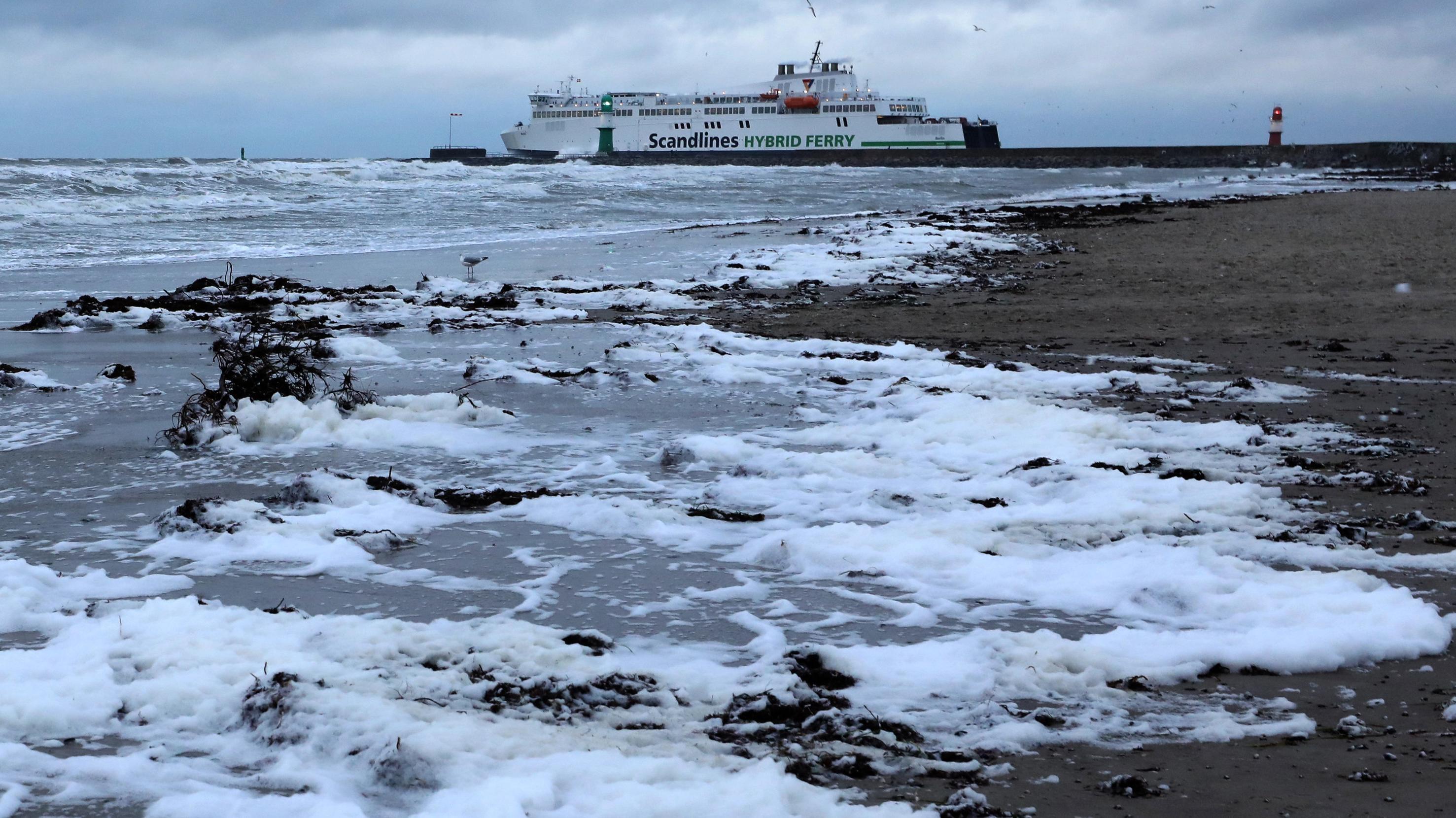 Warnemünde: Weißer Schaum hat sich an der aufgewühlten Ostsee angesammelt.