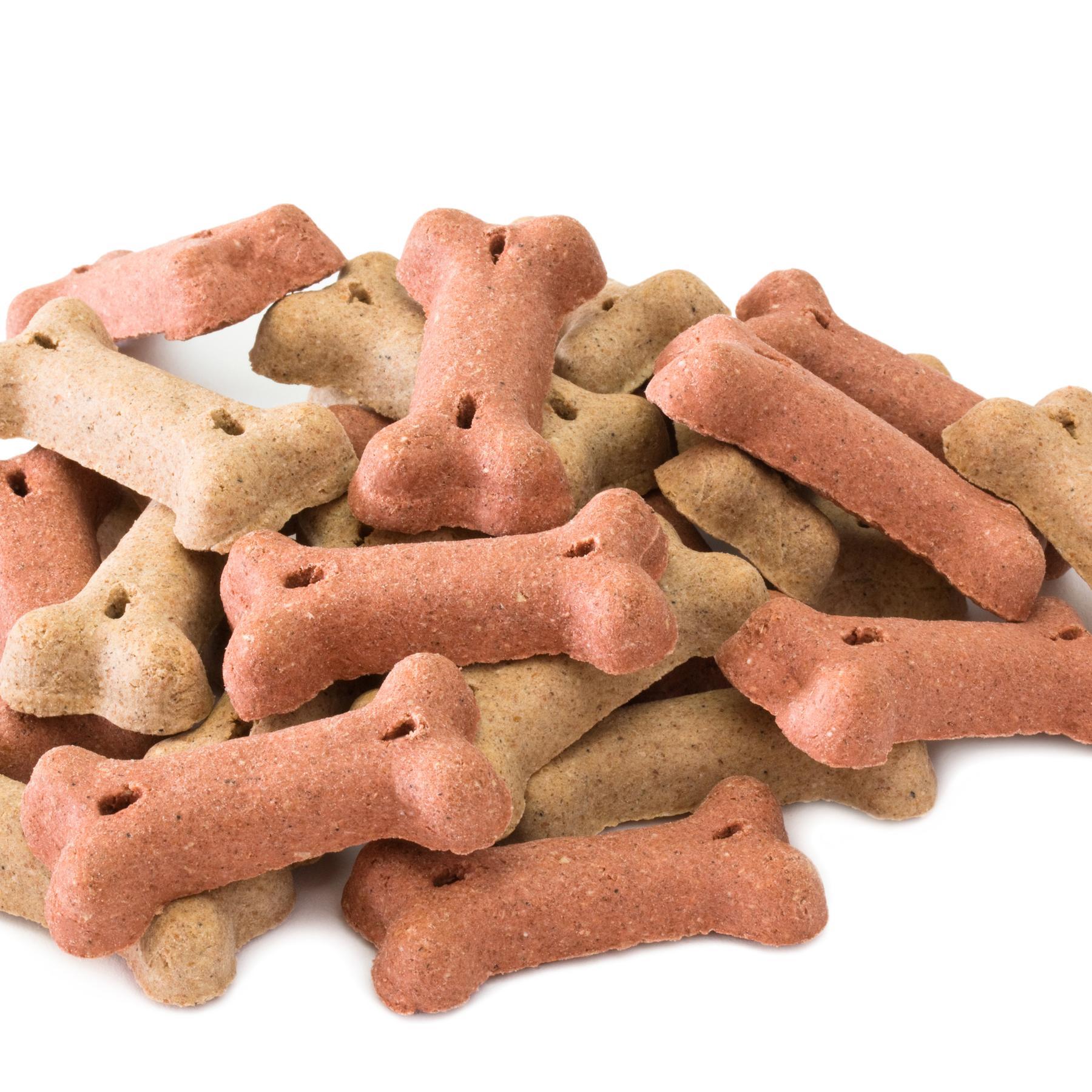 Futter für Hund und Katzen - Rundum gesund?