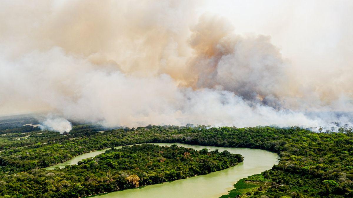 Rauchwolken über dem Pantanal, einem der größten Binnenland-Feuchtgebiete der Welt.