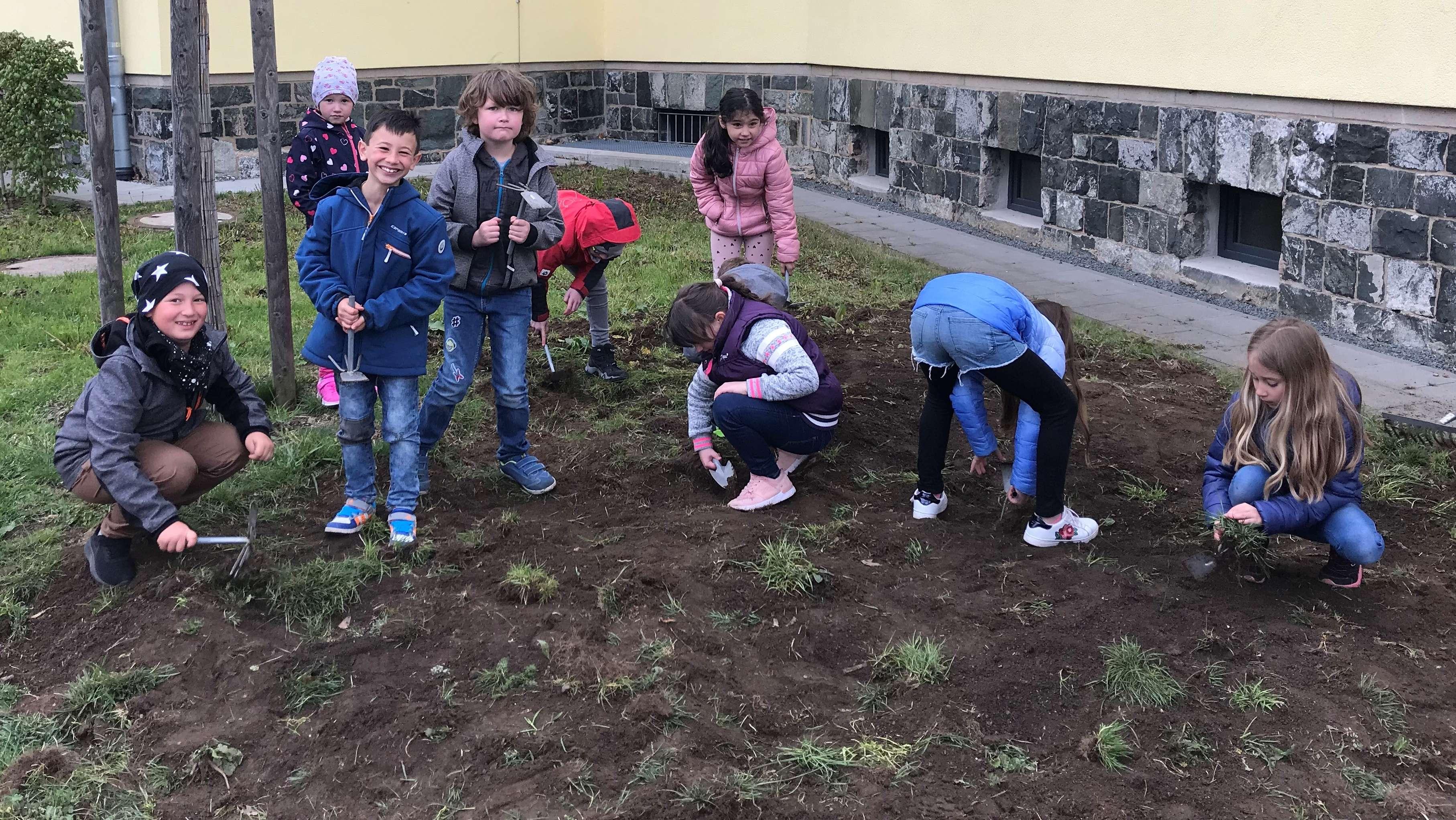 Kinder einer Hofer Grundschule graben eine Wiese um, um dort einen Blühstreifen anzulegen.