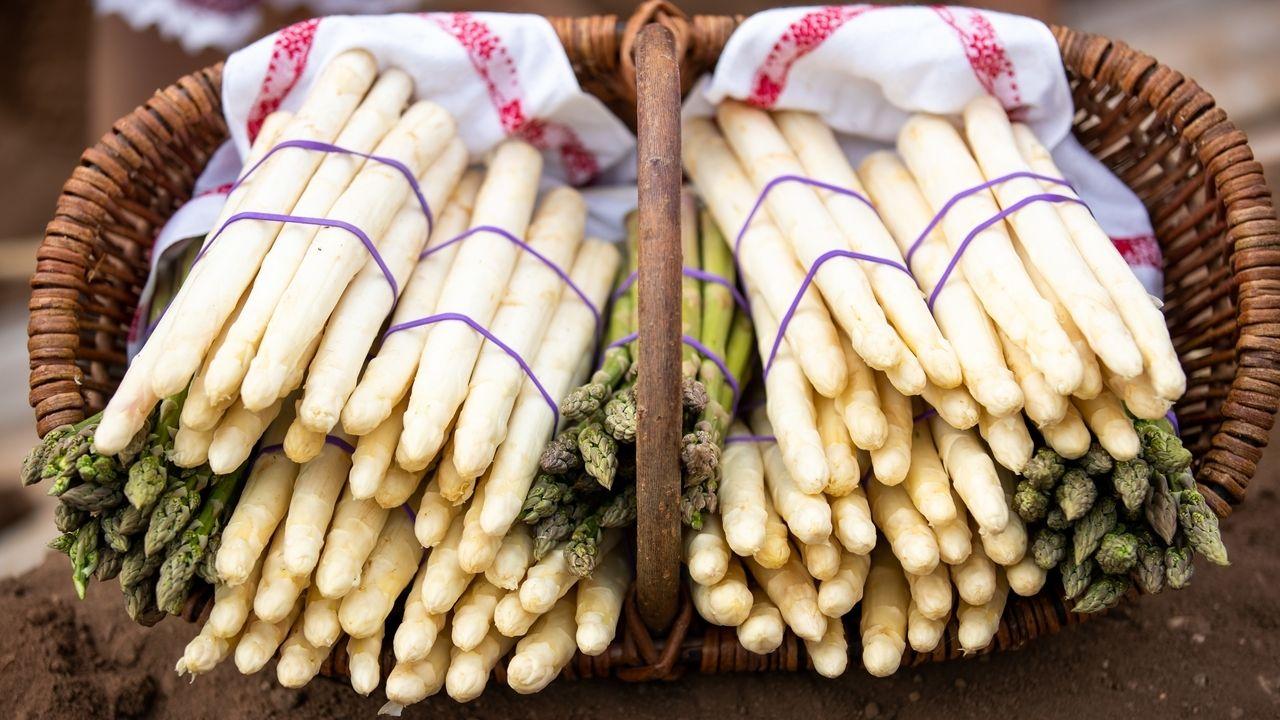 Ende Juni endet traditionell die Spargelsaison - der Erzeugerverband Qualitätsspargel aus Abensberg ist zufrieden mit der Ernte