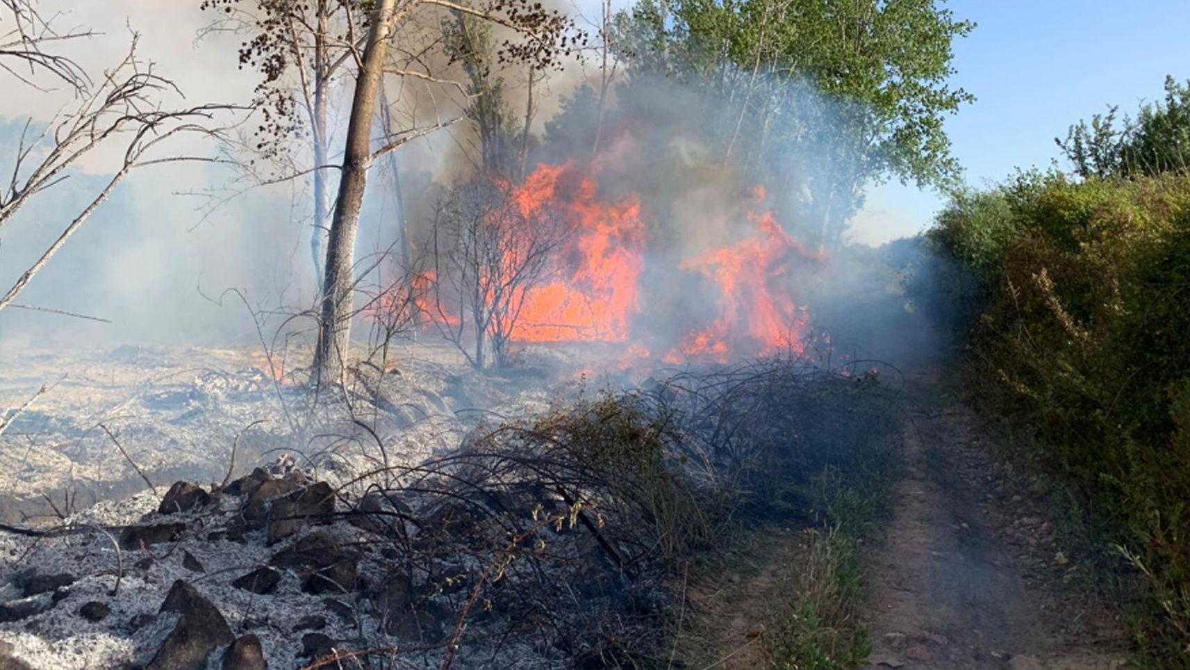 Waldbrand in der Nähe der Stadt Tortoli auf Sardinien