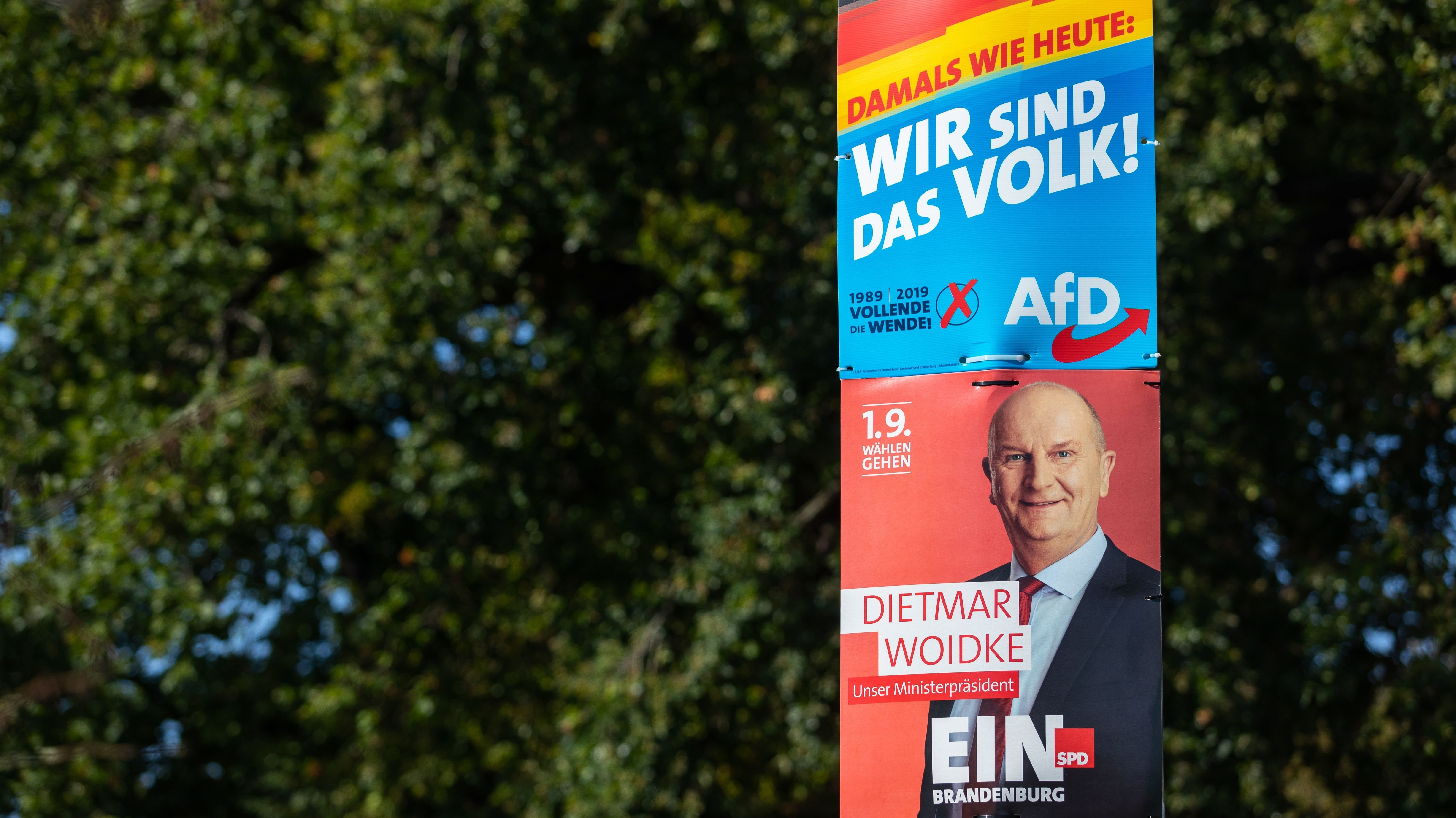 Wahlplakate von Dietmar Woidke (SPD) und von der AFD an einem Laternenmast