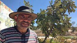 Daoud Nassar auf seiner Farm im Westjordanland | Bild:BR/Elisabeth Möst