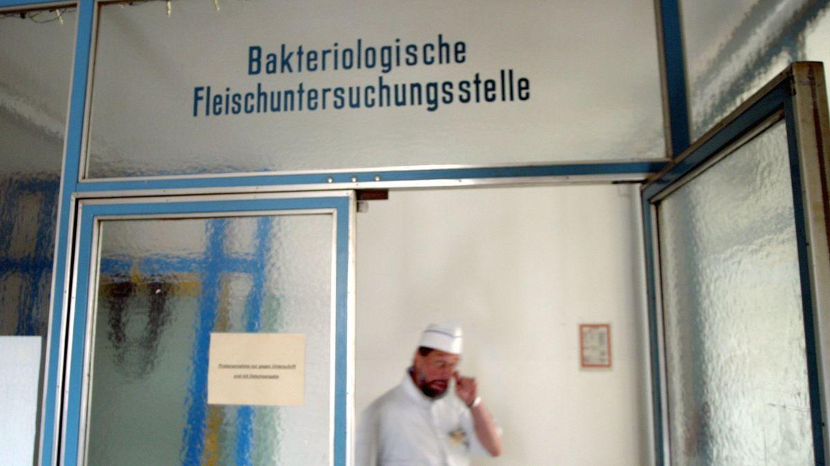 Eine Aufnahme aus dem Schlacht- und Viehhof in München. Die Freien Wähler fordern ein regionales Schlachthofkonzept.
