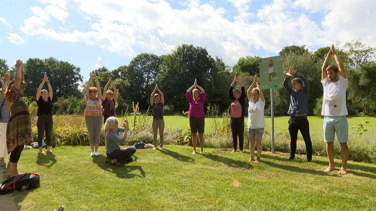 Frauen und Männer zeigen Yogaübungen auf einer Wiese. Sie strecken beide Hände in die Luft.