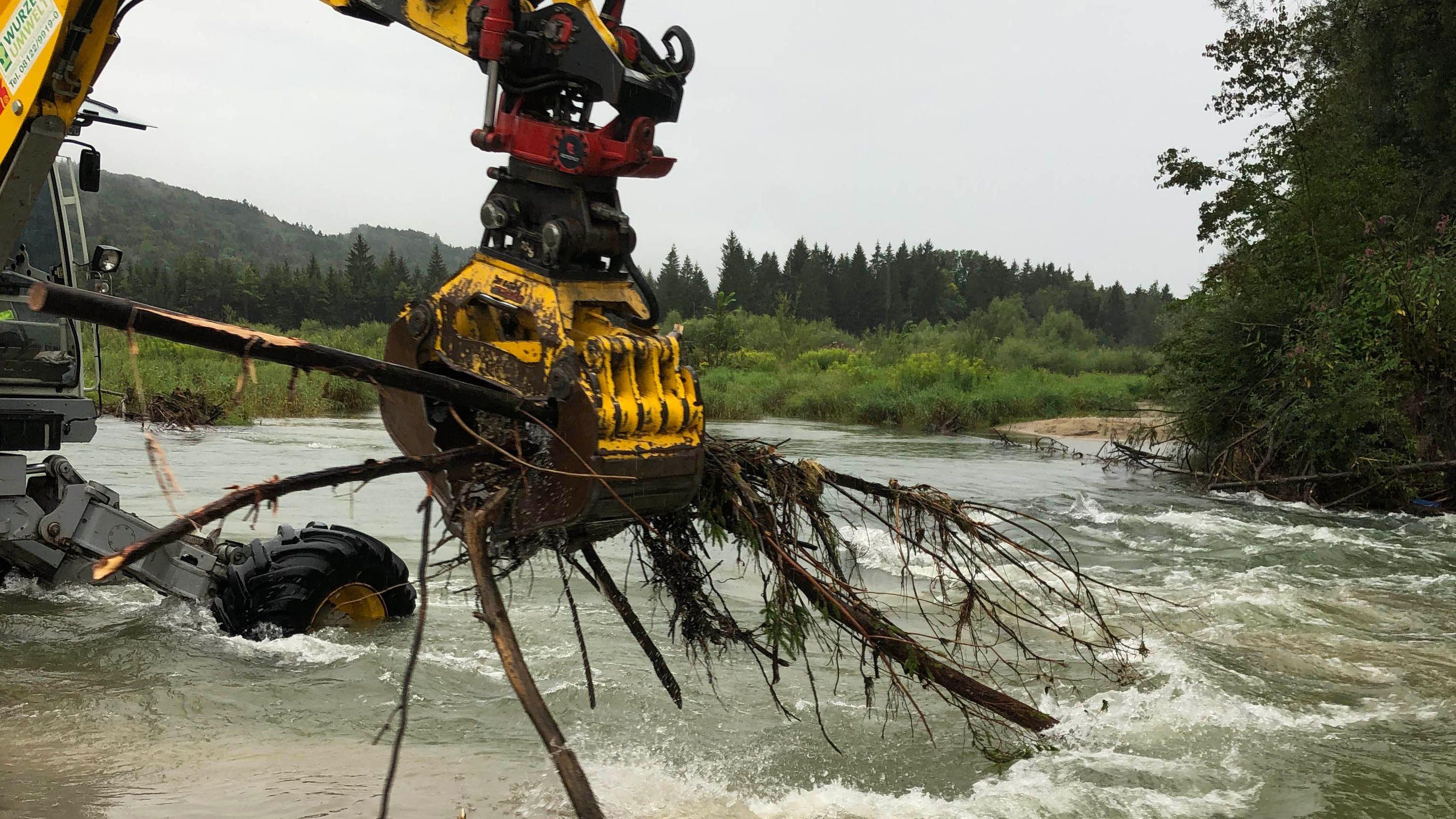 Der Baumstamm wurde am 19.08.2019 mit einem Schreitbagger aus der Isar entfernt.