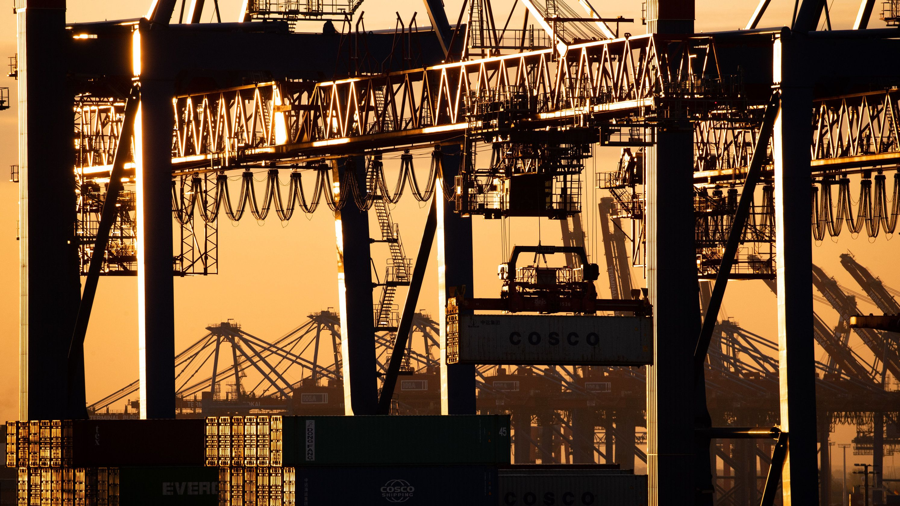 Ein Containerschiff wird am Containerterminal Tollerort der Hamburger Hafen und Logistik AG (HHLA) entladen.