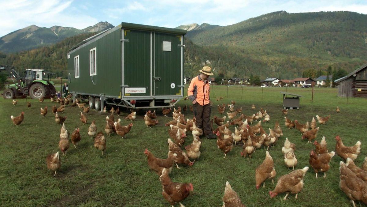Josef Krötz aus Farchant steht inmitten seines mobilen Hühnerstalls.