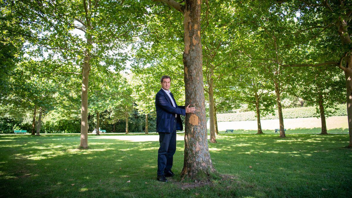 Archivbild: Ministerpräsident Söder präsentiert sich im Münchner Hofgarten als Baum-Freund