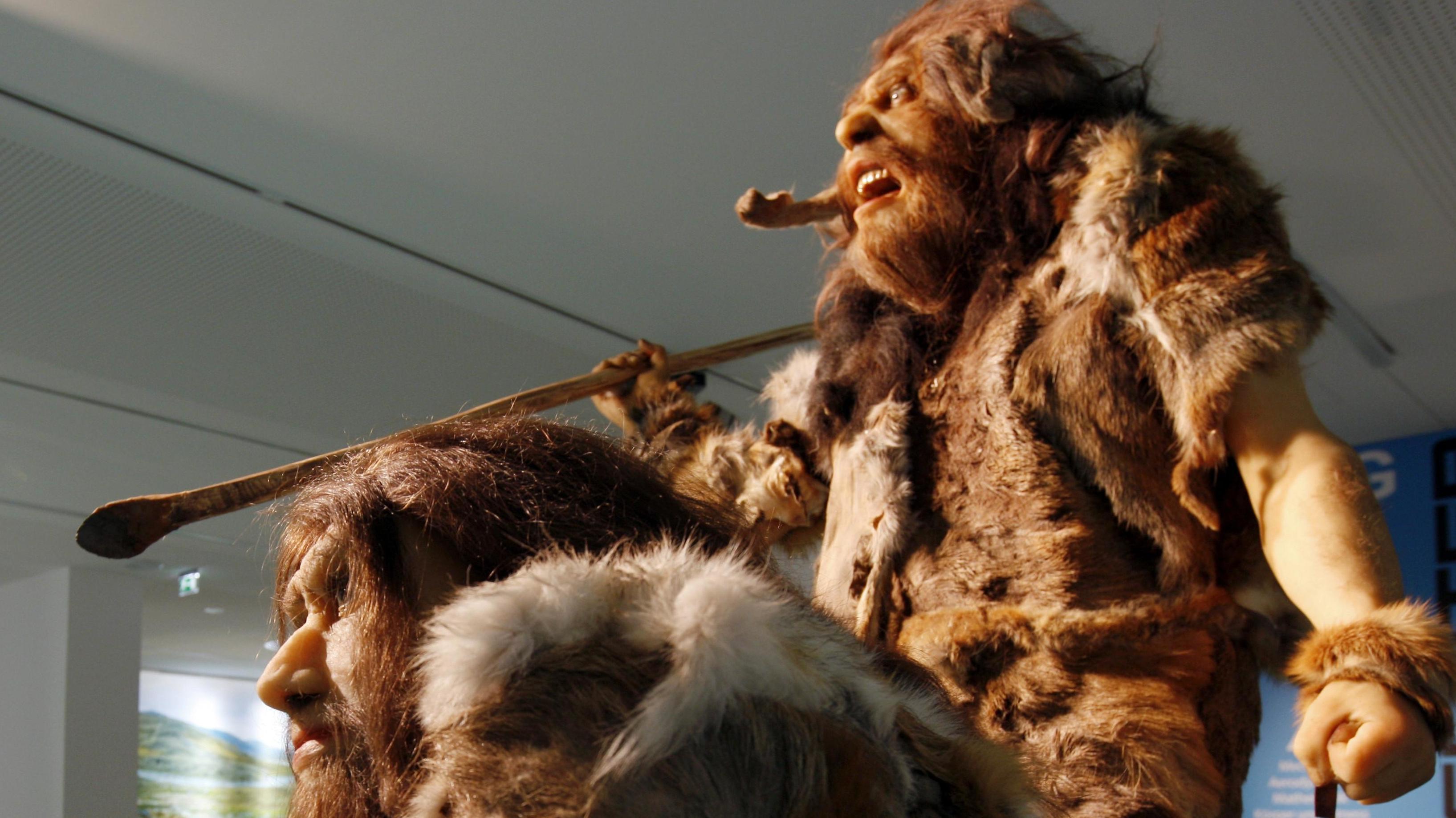 Nachbildungen von Neandertalern aus einer Neandertaler-Ausstellung im Haus der Natur in Salzburg.