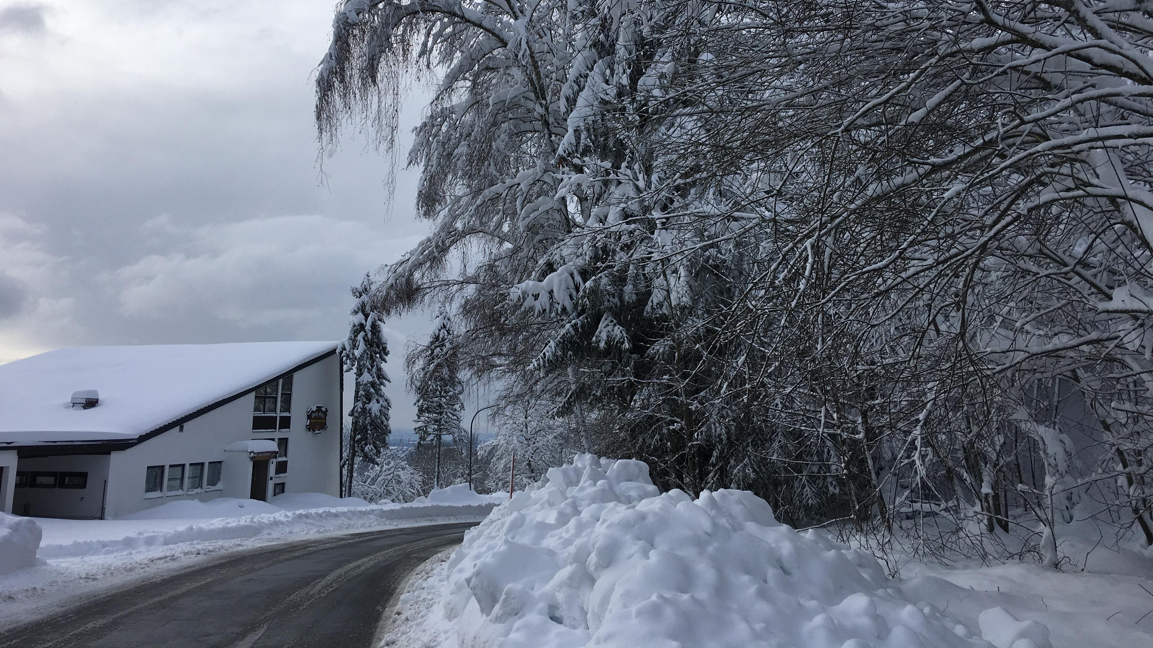 Straße bei Schöfweg