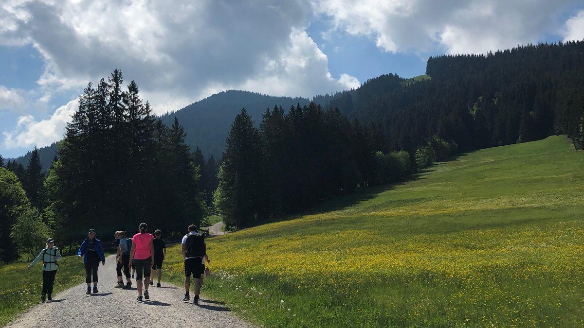 Wanderer auf einem gekiesten Forstweg zwischen blühenden Wiesen, im Hintergrund der Anstieg zum Hörnle