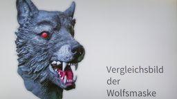 Abbildung der Wolfsmaske, die der Täter getragen haben soll | Bild:BR/Polizei München