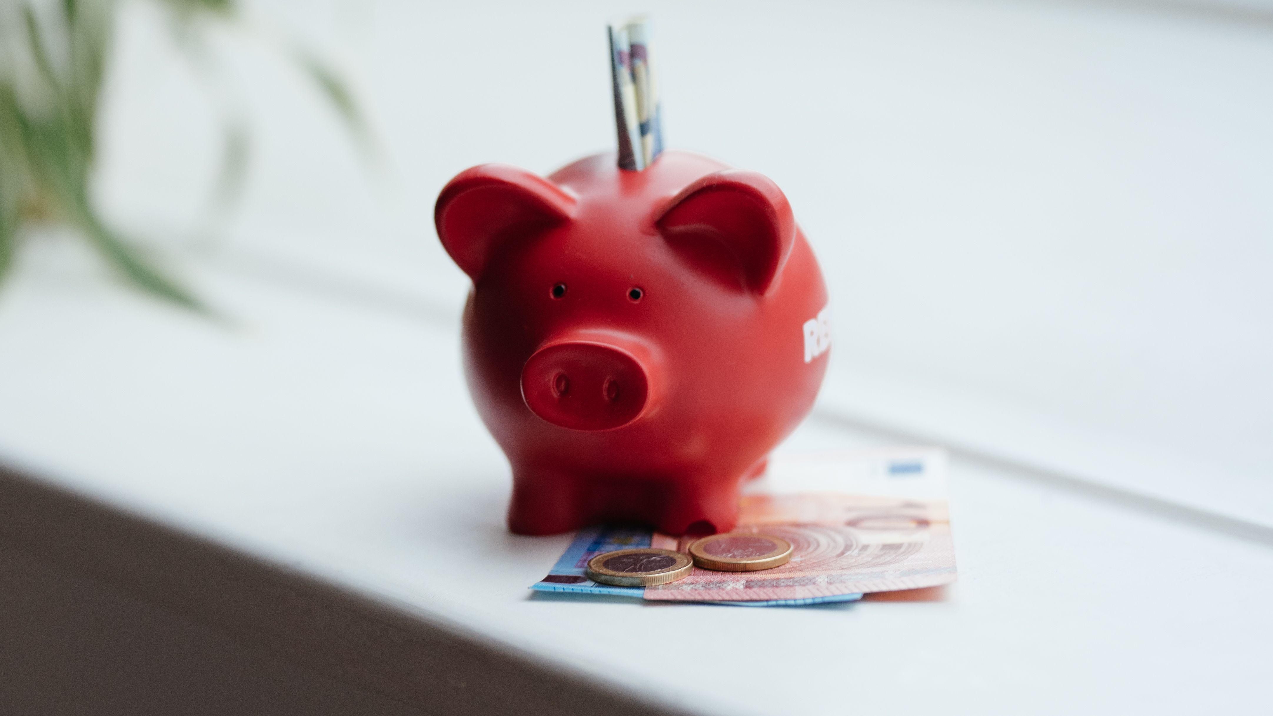 Symbolbild: Ein Sparschwein mit Geldscheinen und Münzen