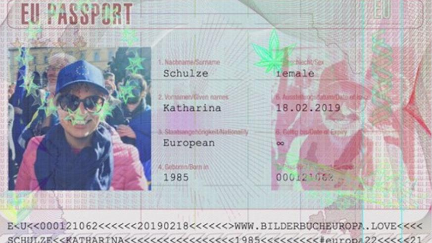 Virtueller EU-Pass von Grünen-Fraktionschefin Katharina Schulze, gepostet auf Facebook