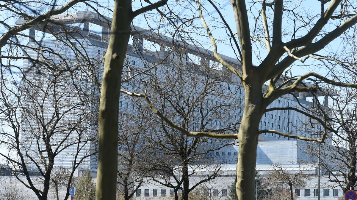 Bäume vor dem Klinikum Großhadern der Ludwig-Maximilians-Universität München