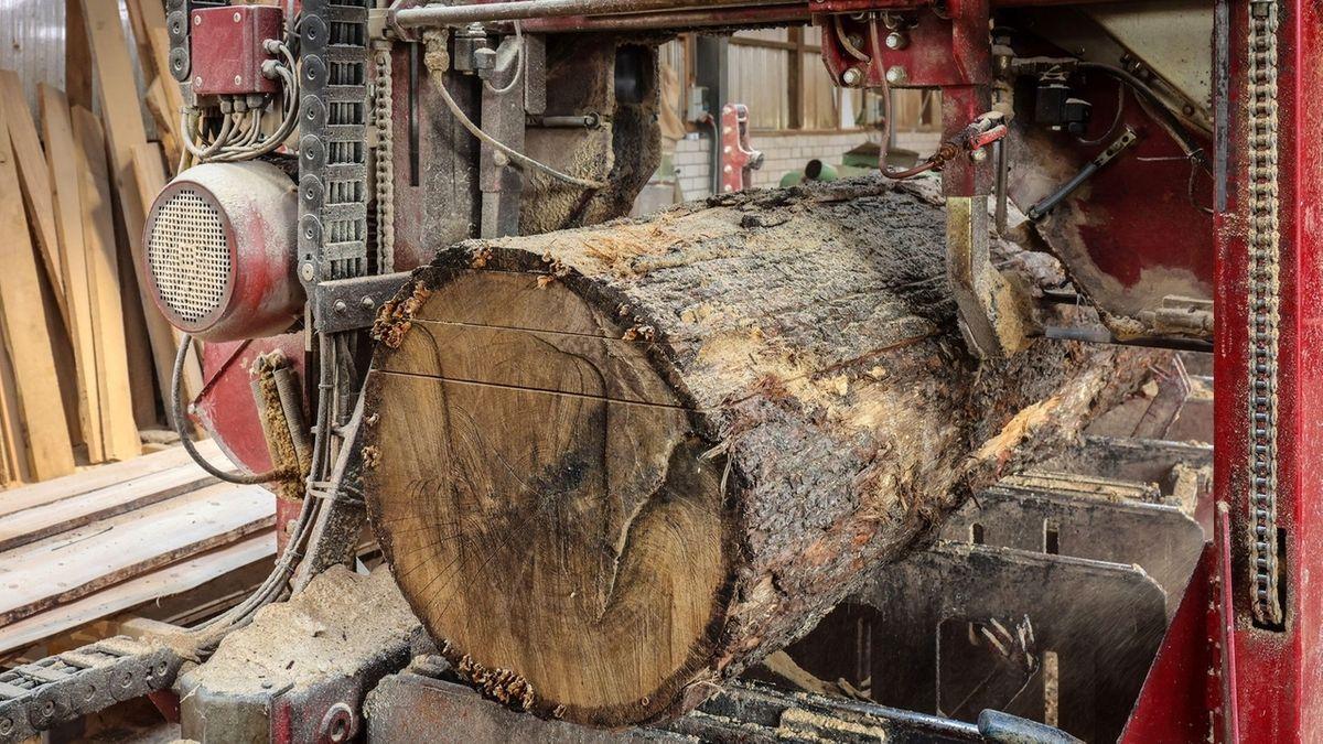 Ein Baumstamm in einer Sägemaschine
