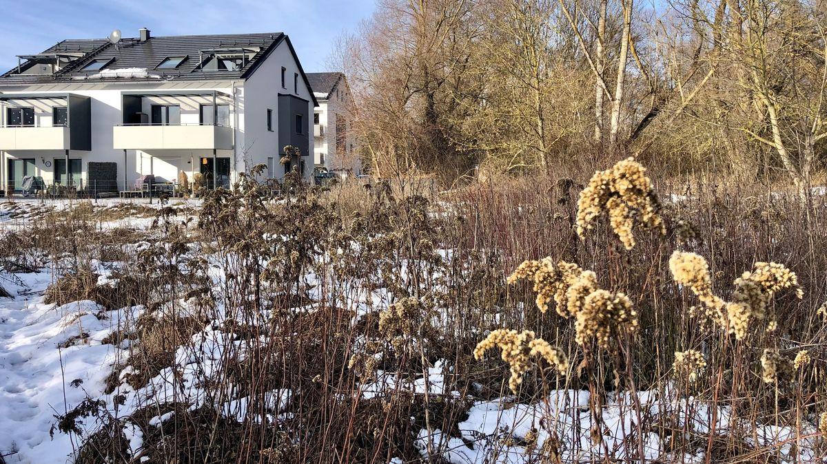 Das umstrittene Baugrundstück am Rande des als Biotop kartierten Bahnhofswaldes