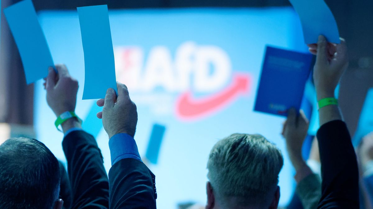 Delegierte halten bei einem Landesparteitag der AfD in NRW ihre Stimmkarten hoch.
