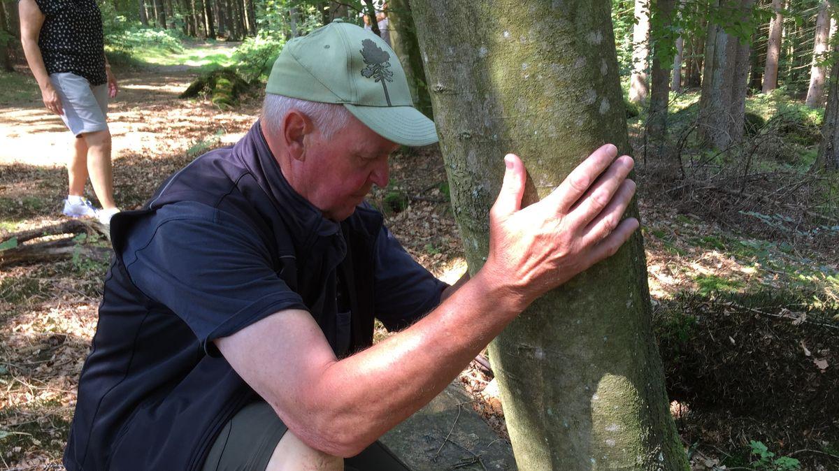 """Ein Teilnehmer """"spürt"""" einen Baum"""