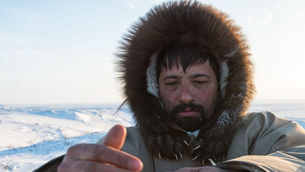 World Press Photo 2020, Kategorie Natur, Bilderstrecke von Peter Mather über Bärenmarder