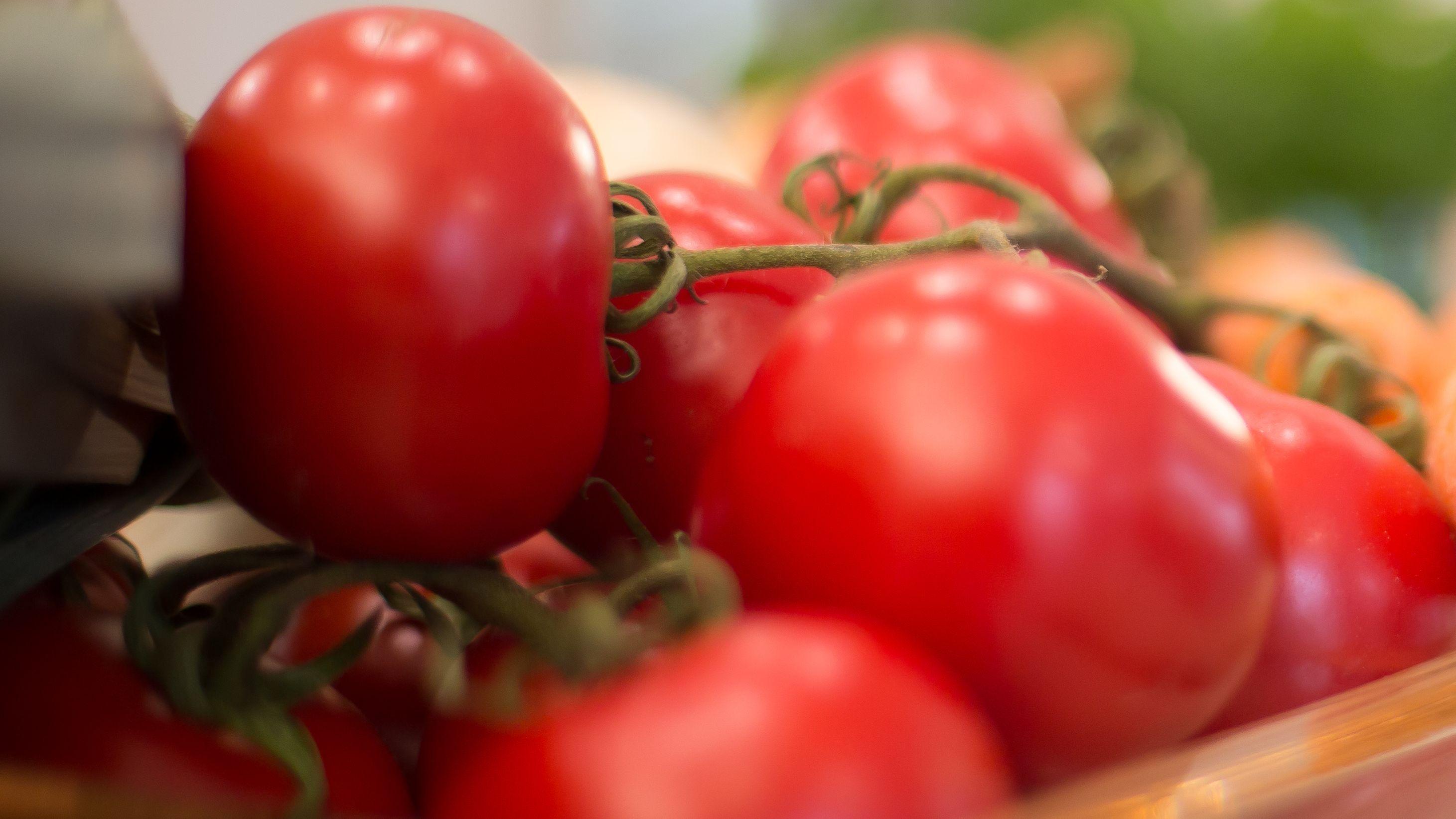Tomaten (Symbolbild)