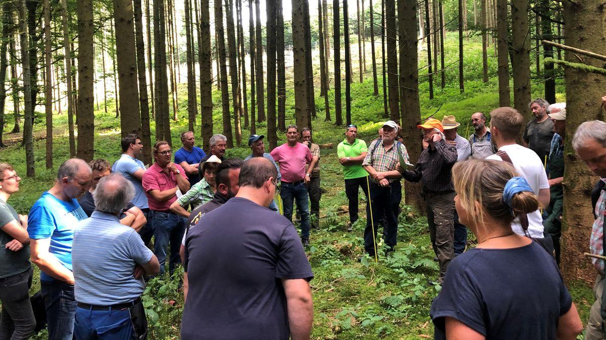 Rund 50 Interessierte, Jäger, Förster, Naturschützer und Bürger, sind zum Waldrundgang durch den Wittislinger Gemeindewald gekommen.