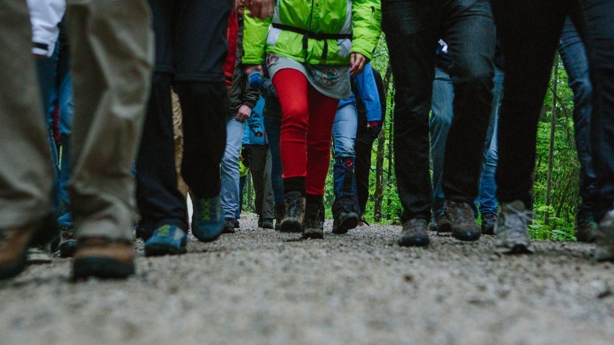 Menschen wandern auf Wanderweg