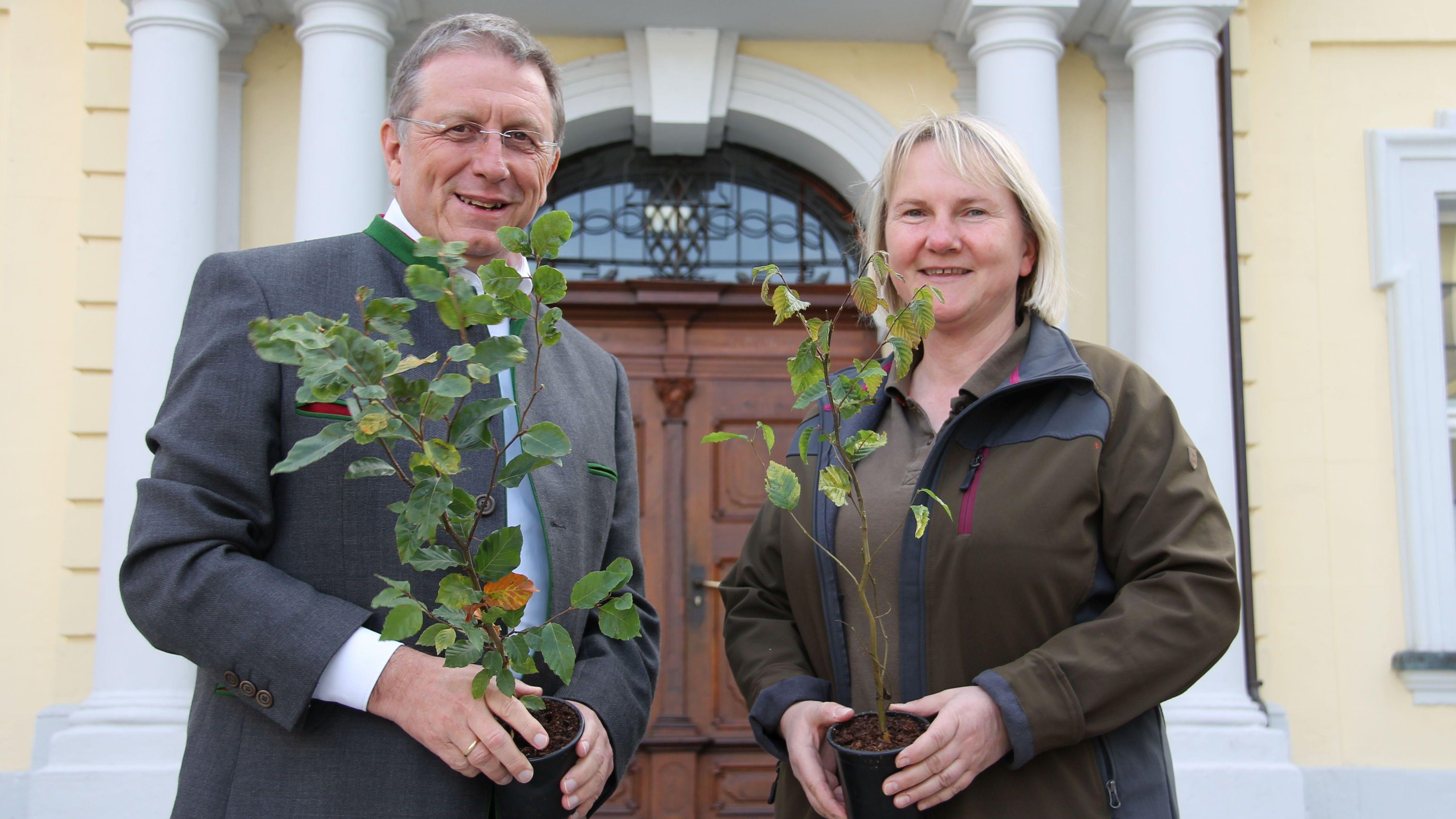 Oberbürgermeister Henry Schramm und Kulmbachs Stadtförsterin Carmen Hombach stehen vor dem Rathaus und halten Baumpflanzen in den Händen.