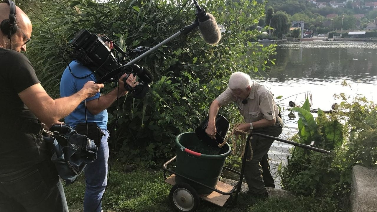 Josef Frank holt eimerweise Wasser aus dem Main