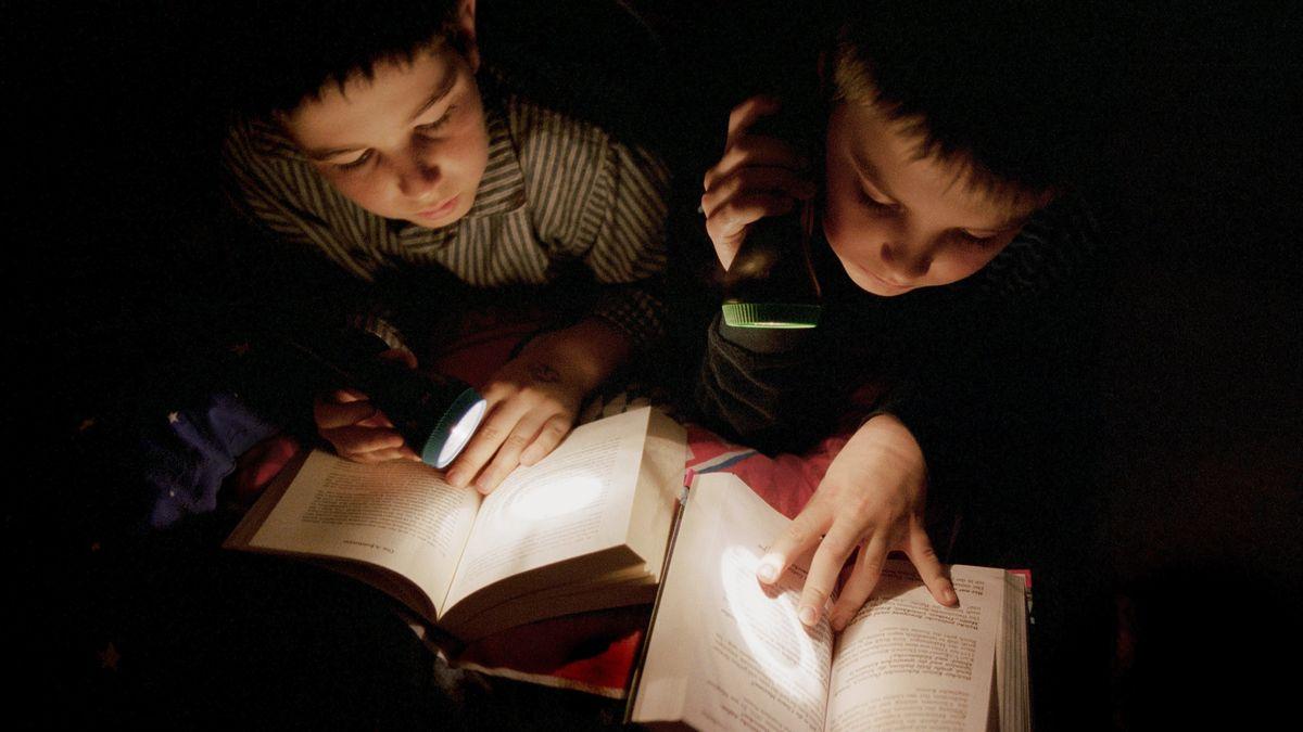Kinder lesen Bücher im Bett unter der Bettdecke mit ihren Taschenlampen. (Symbolbild)