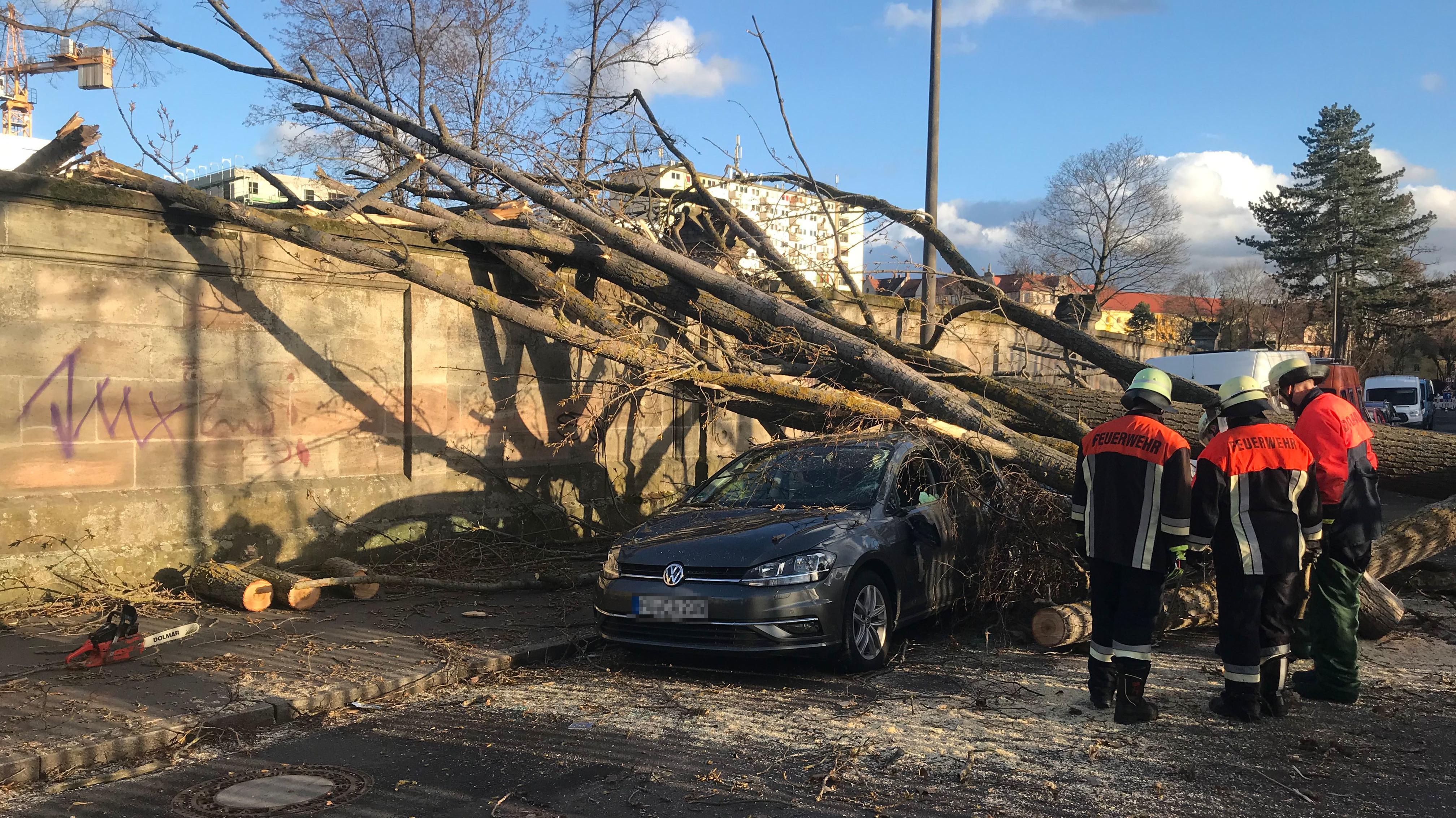 Baum liegt auf Auto in Nürnberg